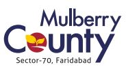 LOGO - MGH Mulberry County