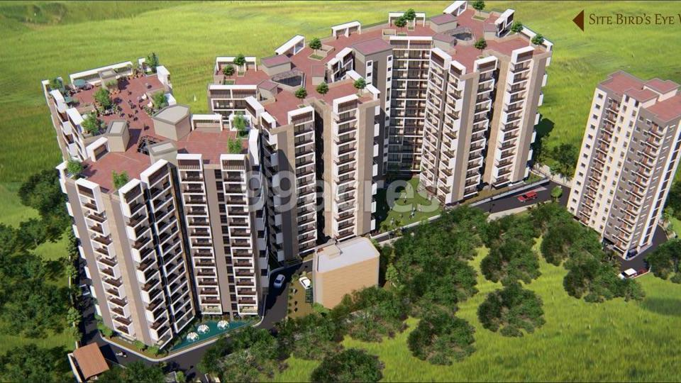 Moti Pearl Orchid Aerial View