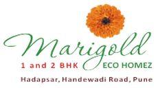 LOGO - Nagpal Marigold