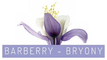 LOGO - Nahar Barberry and Bryony