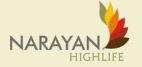 LOGO - Narayan Highlife