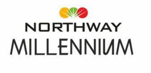 LOGO - Northway Millenium