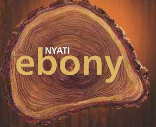 LOGO - Nyati Ebony