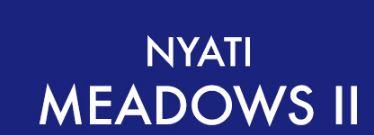 LOGO - Nyati Meadows 2