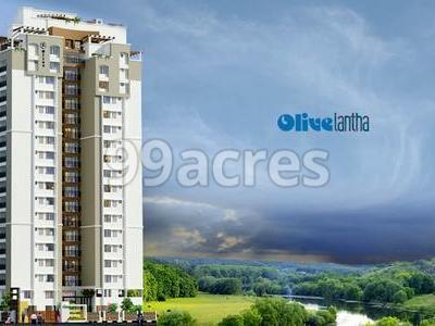 Olive Builders and Developers Pvt Ltd Olive Iantha Edapally, Kochi