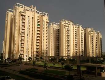 Orchid Infrastructure Developers Orchid Petals Sector-49 Gurgaon
