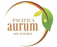 Pacifica Aurum Chennai South