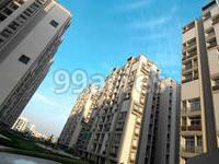 Pacifica Companies Builders Pacifica Green Acres Prahlad Nagar, SG Highway & Surroundings