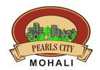 LOGO - Pearls City