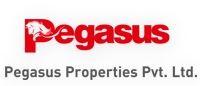 Pegasus Properties