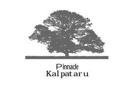 LOGO - Pinnacle Kalpataru