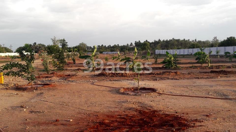 Shanmuga Garden Farmland Site View