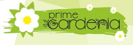 LOGO - Prime Gardenia