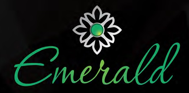 LOGO - Rajkham Emerald