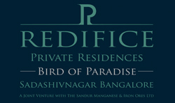 LOGO - Redifice Bird of Paradise