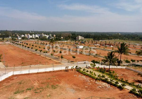 Reliaable Dollar Collony Site View