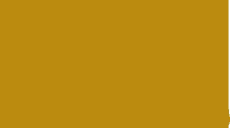 LOGO - Rise Resort Residences