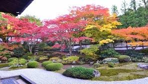 Royal City Artistic Garden