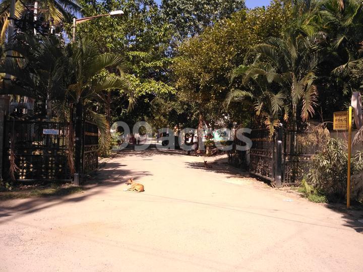 Royal Placid Entrance View