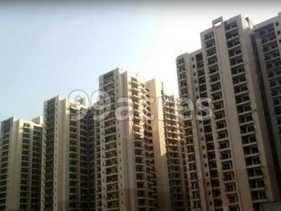 Sam India Built Well Builders Sam Palm Olympia Noida Extension