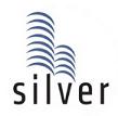 LOGO - SFS Cyber Palms Silver