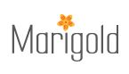 LOGO - Shree Tirupati Marigold