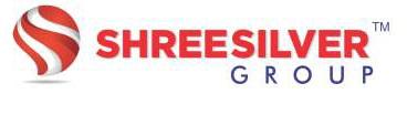 Shreesilver Group