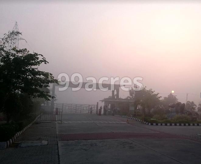 Joy at Shriram Temple Bells Entrance