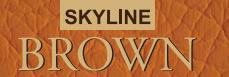 LOGO - Skyline Brown