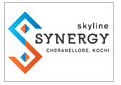 LOGO - Skyline Synergy