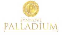 Synnove Palladium Vadodara