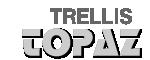 LOGO - Trellis Topaz