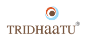 Tridhaatu Realty and Infra