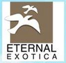 LOGO - Eternal Exotica