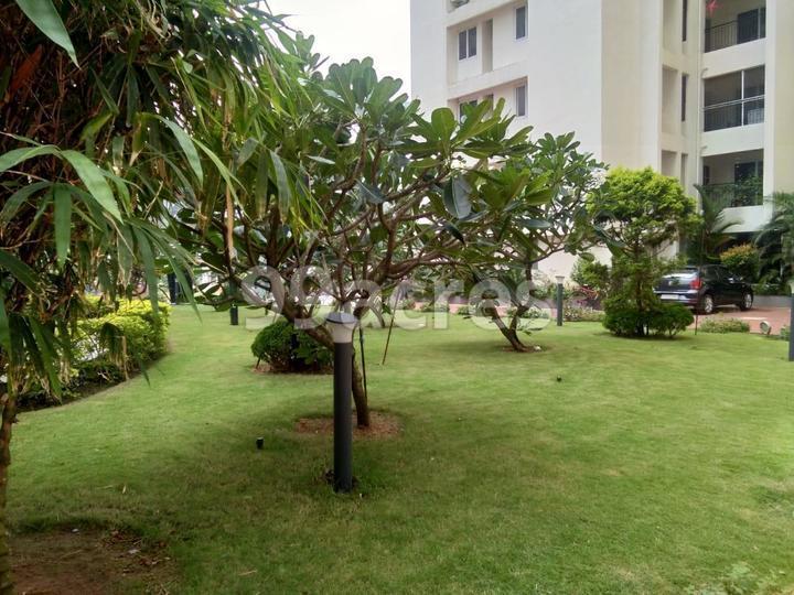 Trinity World Landscape Garden