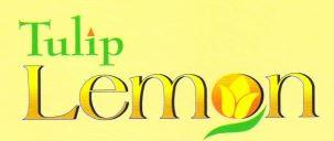 LOGO - Tulip Lemon