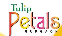 LOGO - Tulip Petals