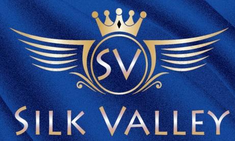 LOGO - Silk Valley
