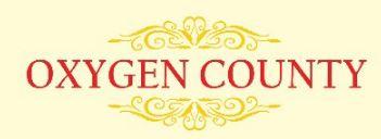 LOGO - Bhashyam Oxygen County