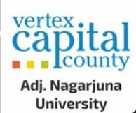 LOGO - Vertex Capital County