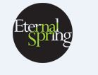 LOGO - Vijay Shanthi Eternal Springs