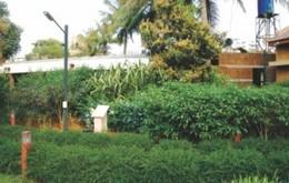Zed Homes Zed Wildgrass Vijaynagar, Mysore